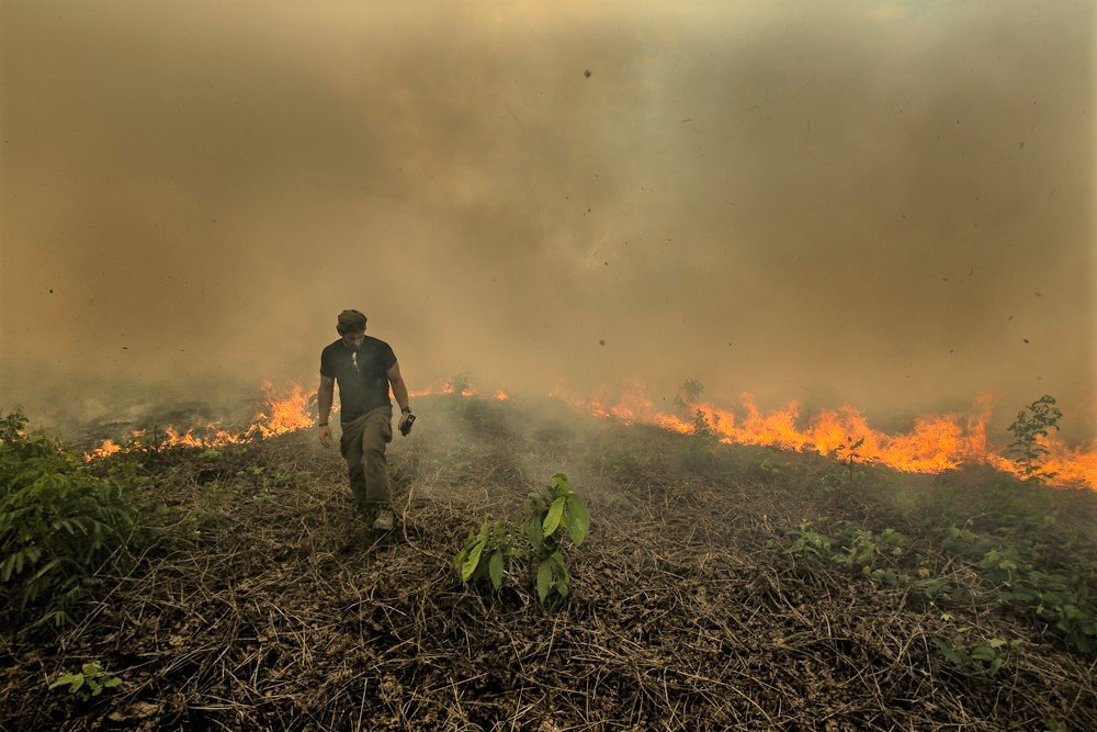 Rainforest Alliance Response To The Wildfires In The Brazilian