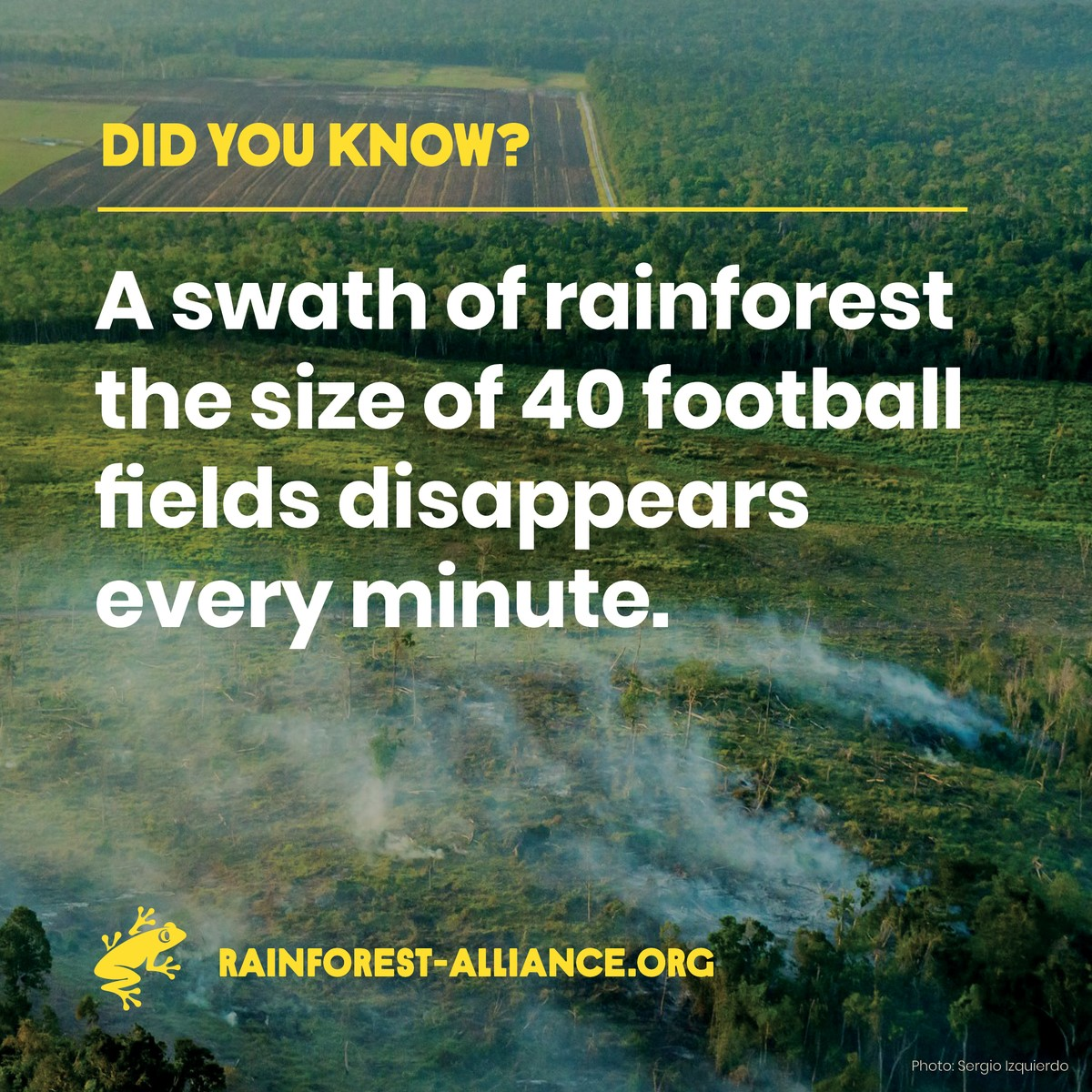 The Rainforest Alliance response to the IPCC Special Report on Climate Change and Land